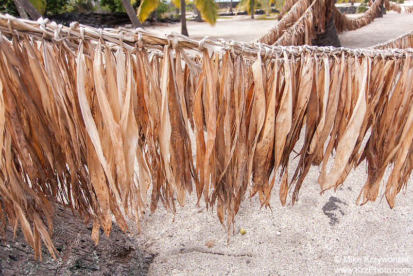 Ti (Ki) leaves hanging on hukilau rope in Pu'uhonua o Honaunau place of refuge national historical park, Big Island, Hawaii
