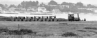 BNPS.co.uk (01202 558833)<br /> Pic: Echo/BNPS<br /> <br /> Noddy train at Hengistbury head 28th July 1977.<br /> <br /> There was outrage today after a family that has run one of Britain's first 'Noddy' land trains for 46 years were served with a notice to quit the service.<br /> <br /> The much-loved novelty train that carries people to a remote beach was started in 1968 by the late Roger Faris, who hand-built the carriages himself.<br /> <br /> Since his death 34 years ago his widow Joyce, 88, has operated the independent service for 364 days a year and runs it more as a hobby than a profitable business.<br /> <br /> The little train has been used by generations of people and become a popular fixture at the Hengistbury Head beauty spot in Dorset.<br /> <br /> Now after five decades of service, town hall officials have told Mrs Faris they will not be renewing their contract with her as they intend to operate their own train service.