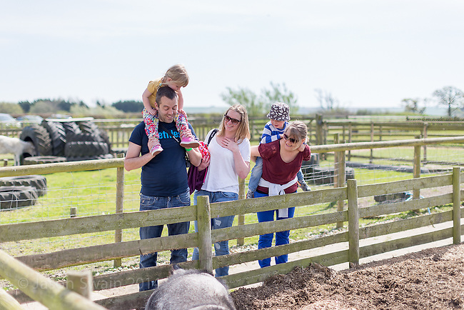 Family fun at Coleman's Park Farm on the Isle of Wight
