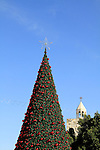 Bethlehem, Christmas tree in Manger square, the Church of the Nativity is in the background