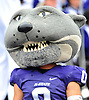 Nov 14, 2009; Manhattan, KS, USA; Kansas State Wildcats mascot entertains the crowd during the game against the Missouri Tigers at Bill Snyder Family Stadium. The Tigers won 38-12. Mandatory Credit: Denny Medley-US PRESSWIRE