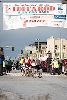 Alan Eischens and team leave the ceremonial start line with an Iditarider at 4th Avenue and D street in downtown Anchorage, Alaska during the 2015 Iditarod race. Photo by Jim Kohl/IditarodPhotos.com