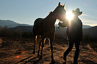 Wranglers lead the horses back to pasture after a long day of leading dudes at Trail Horse Adventures.