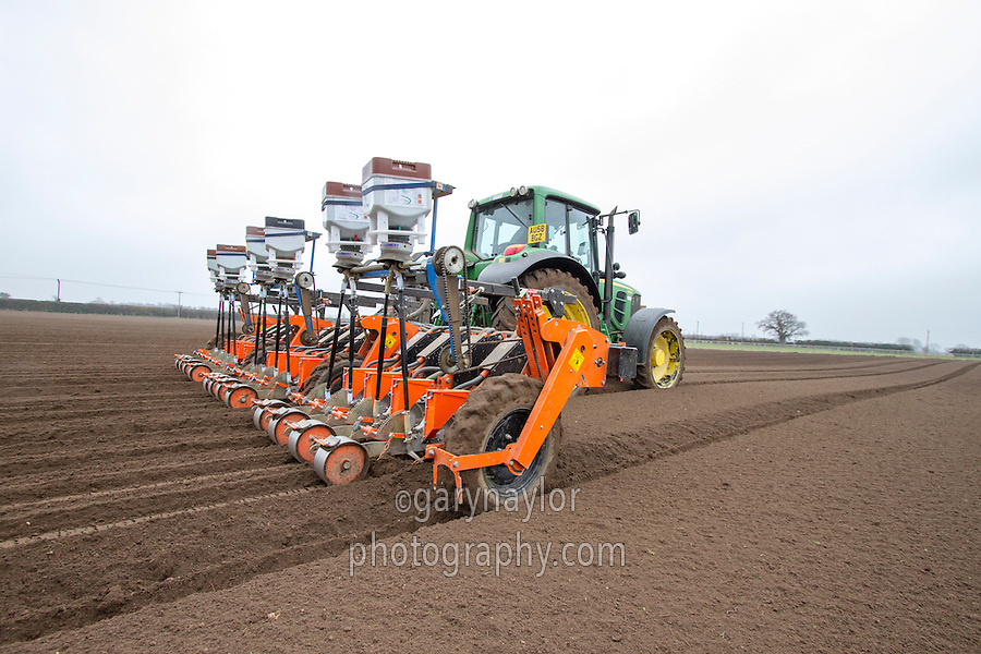 Drilling carrots with a twelve row Stanhay drill and Horstine applicators in beds - March; Norfolk