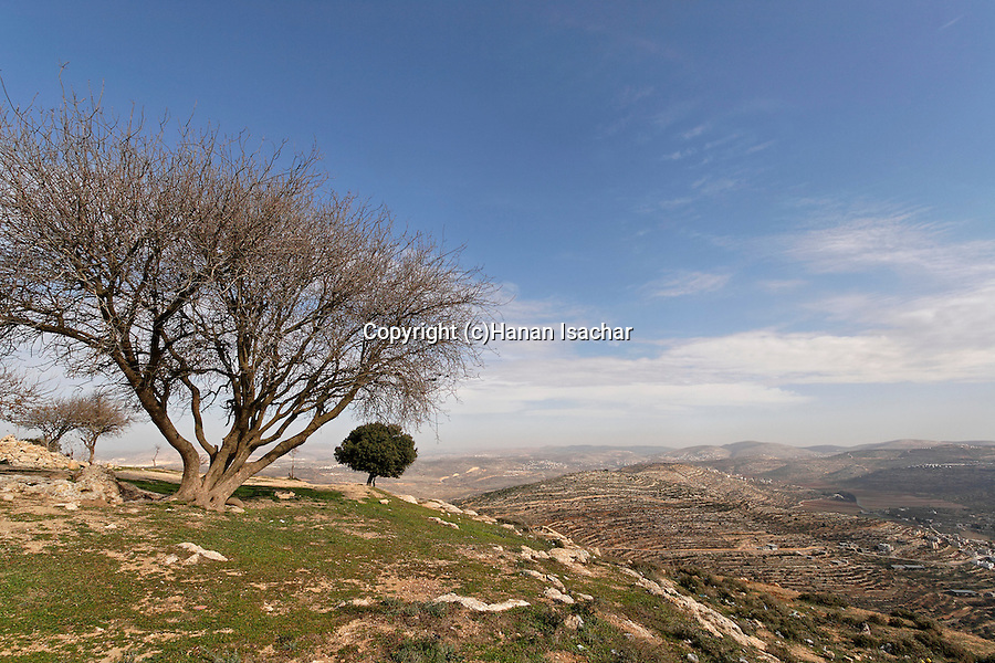 Judea, Beth El mountains. A view of Samaria from Sheikh Zeid