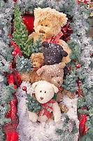 Christmas bears. Al's Nursery. Woodburn. Oregon