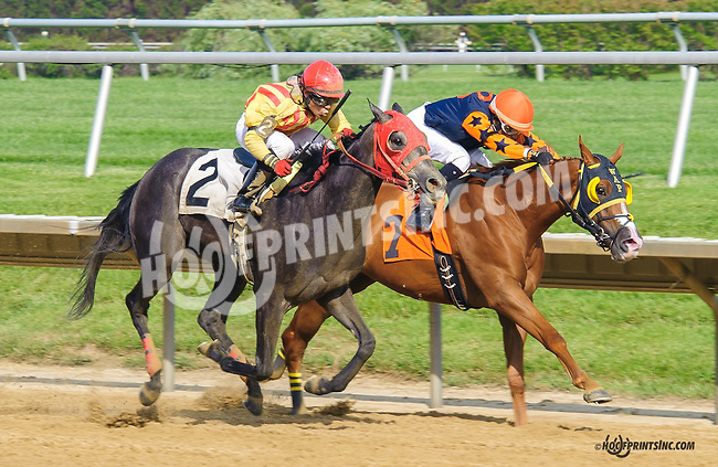 Kholberg winning at Delaware Park  on 5/25/15