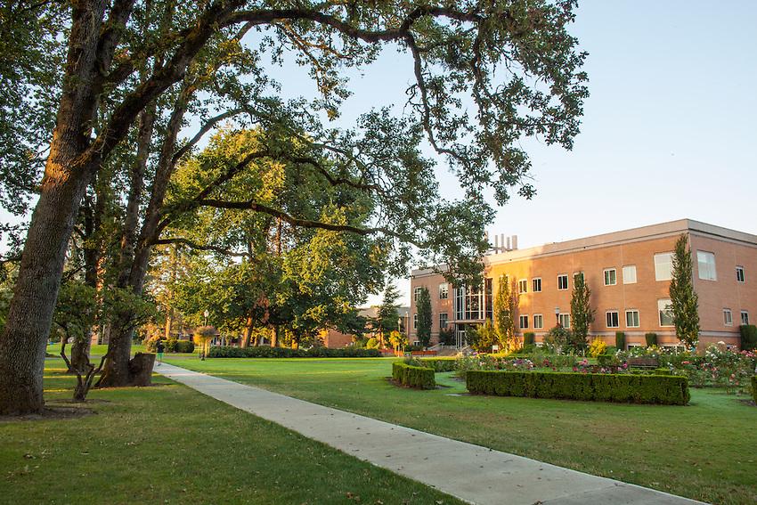 George Fox Newberg Campus Scenic