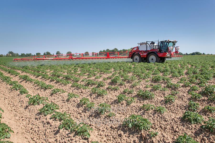 Blight spraying potatoes - 36 meter Agrifac