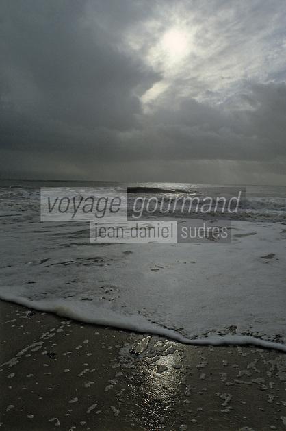 Europe/France/Poitou-Charentes/17/Charente-Maritime/Ile de Ré: Isthme du Mortray - Plage