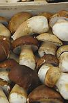 Brown mushrooms on market stall. viktualienmarkt, Munich, Bavaria.