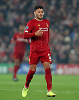 5th November 2019; Anfield, Liverpool, Merseyside, England; UEFA Champions League Football, Liverpool versus Genk; Alex Oxlade-Chamberlain of Liverpool  - Editorial Use