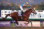 November 2, 2019: Vino Rosso, ridden by Irad Ortiz, Jr., wins the Longines Breeders' Cup Classic on Breeders' Cup World Championship Saturday at Santa Anita Park on November 2, 2019: in Arcadia, California. Bill Denver/Eclipse Sportswire/CSM