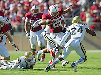 STANFORD, CA - October 19, 2013:  Stanford Cardinal running back Tyler Gaffney (25) gains yardage during the Stanford Cardinal vs the UCLA Bruins at Stanford Stadium in Stanford, CA. Final score Stanford Cardinal 24, UCLA Bruins  10.