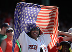 BOSTON, MA - July 4:  A fan waves a flag in honor of the fourth of July  during a game between the Boston Red Sox and the San Diego Padres on July 4, 2013 at Fenway Park in Boston, Massachusetts. (Photo by Michael Ivins/Boston Red Sox)