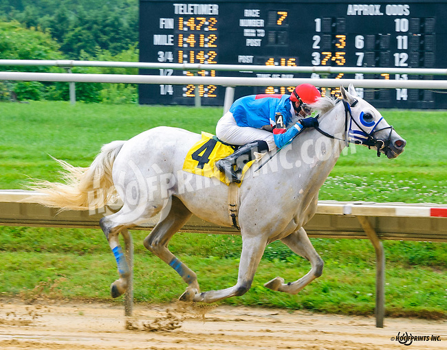 Hiram winning at Delaware Park on 7/13/16