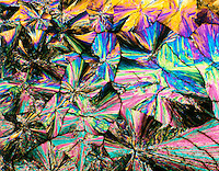 ASPIRIN CRYSTALS ARE OPTICALLY ACTIVE <br /> Acetylsalicylic Acid C9H8O4<br /> 75x mag. Liquefied & recrystallized, polarized light