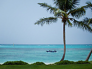 Framed by palm trees, a boat passes by a beach in the blue waters of the Dominican Republic.