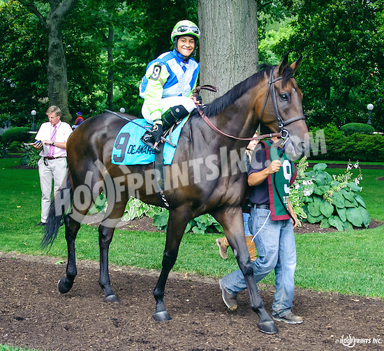 Set To Music before The Cape Henlopen Stakes at Delaware Park on 7/9/16