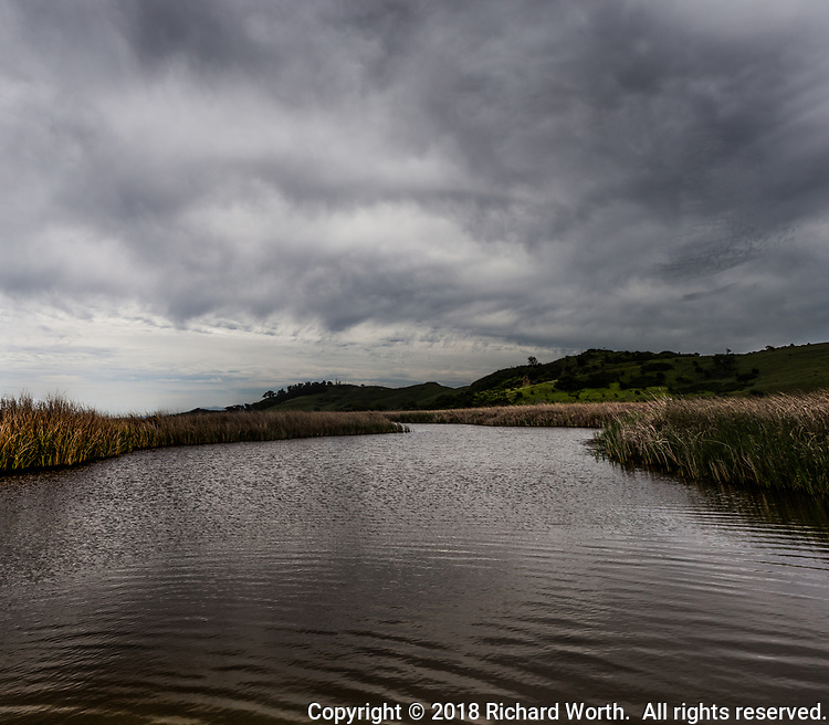 Ominous dark clouds fill the sky over the Main Marsh and green hills of Coyote Hill Regional Park in Fremont, California.