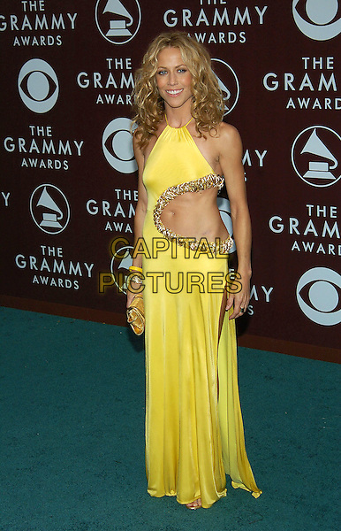 SHERYL CROW .47th Annual Grammy Awards - Arrivals. Los Angeles, California .February 13th, 2005.Photo Credit: Jacqui Wong/AdMedia.full length yellow halterneck dress cut out cut away belly stomach midriff black suit belly button navel gold trim.www.capitalpictures.com.sales@capitalpictures.com.© Capital Pictures.