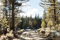 The Pacific Crest Trail crosses a road in Sequoia National Forest, Kern County, Calif.