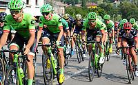 Vuelta stage 19