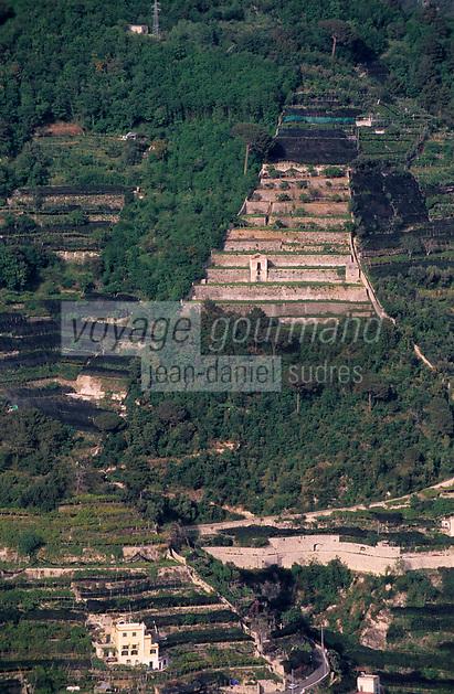 Europe/Italie/Côte Amalfitaine/Campagnie/Ravello : Depuis les terrasses de la villa Rufolo (XIII° qui servit de résidence à plusieurs Papes, à Charles d'Anjou et à Richard Wagner) - Plantations de citronniers