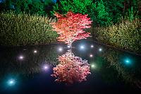 """France, Domaine de Chaumont-sur-Loire, Festival International des Jardins 2018 sur le thème """"Jardins de la pensée"""", jardin """"La possibilité d'une île"""""""