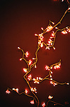 Small decorative christmas lights on a red background