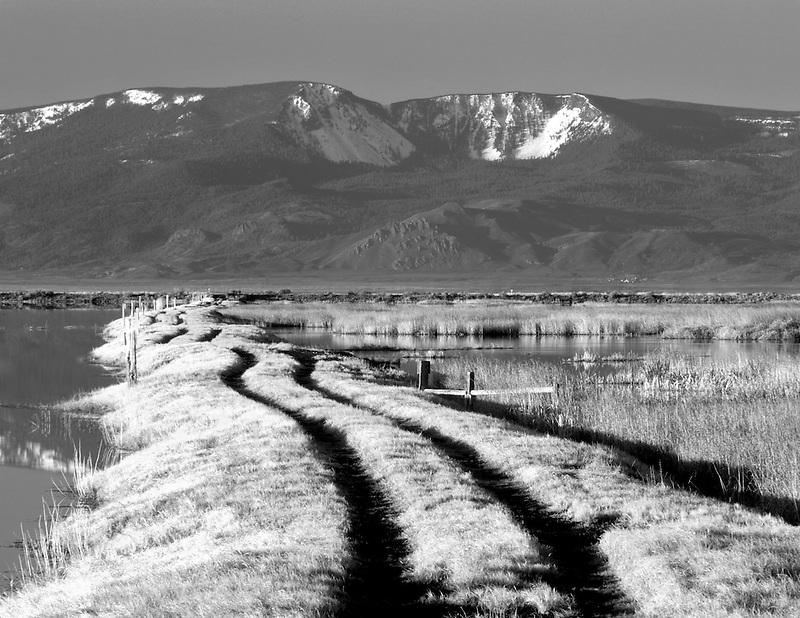 Road in grass with snow covered Winter Rim. Summer Lake State Wildlife Refuge, Oregon