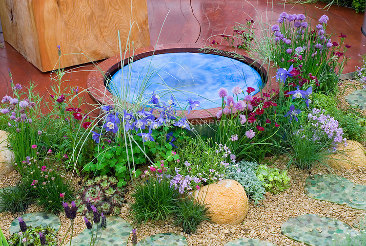 Tiny water feature in garden of flowers Plant Flower Stock