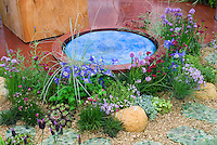 Tiny water garden with alpine dwarf plants next to decking, small rock garden with drought tolerant plants, patio