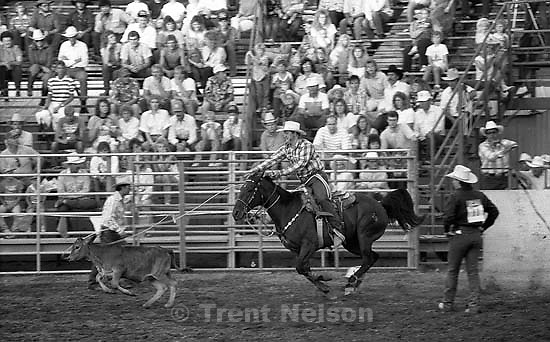 Calf-roping at the Spanish Fork Fiest Days rodeo.<br />