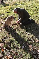 Europe/France/Aquitaine/24/Dordogne/Saint-Cyprien/Pechalifour: Recherche des truffes dans  la truffière  de Péchalifour - cavage - avec Edouard Aynaud,  et Titeuf ,chien truffier