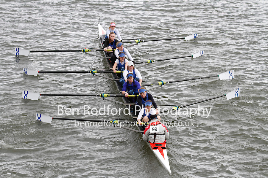 To purchase this photo, or to see pricing information for Prints and Downloads, click the blue 'Add to Cart' button at the top-right of the page.