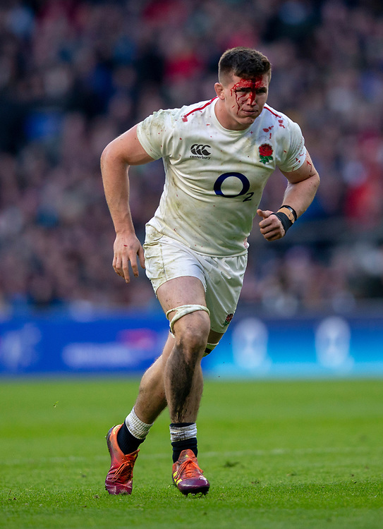 England's Tom Curry<br /> <br /> Photographer Bob Bradford/CameraSport<br /> <br /> Guinness Six Nations Championship - England v France - Sunday 10th February 2019 - Twickenham Stadium - London<br /> <br /> World Copyright © 2019 CameraSport. All rights reserved. 43 Linden Ave. Countesthorpe. Leicester. England. LE8 5PG - Tel: +44 (0) 116 277 4147 - admin@camerasport.com - www.camerasport.com
