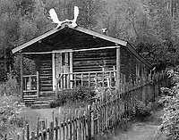"""Yukon Cabin of the Writer Robert Service"" <br />
