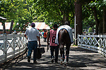 July 24, 2020: #8 Wishes and Dreams walk into the paddock for the first race on Quick Cal DAYl  at Saratoga Race Course in Saratoga Springs, New York. Rob Simmons/Eclipse Sportswire/CSM
