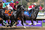 November 2, 2019: Spun to Run, ridden by Irad Ortiz, Jr., wins the Big Ass Fans Breeders' Cup Dirt Mile on Breeders' Cup World Championship Saturday at Santa Anita Park on November 2, 2019: in Arcadia, California. Bill Denver/Eclipse Sportswire/CSM