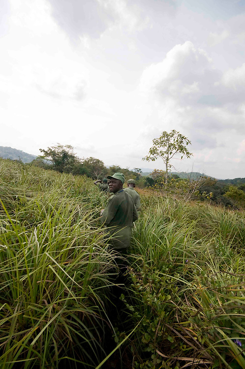 Michael D Moigua, Ranger Team Leader, walks in the Gola Forest