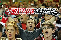 Pictured: A male welsh supporter with a scarf Saturday 22 November 2014<br />