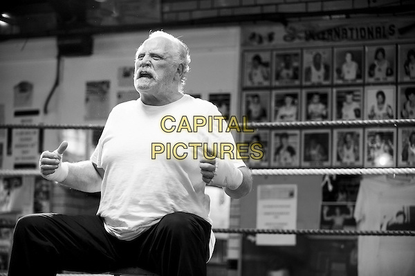 James Cosmo<br /> in The Pyramid Texts (2015) <br /> *Filmstill - Editorial Use Only*<br /> CAP/NFS<br /> Image supplied by Capital Pictures