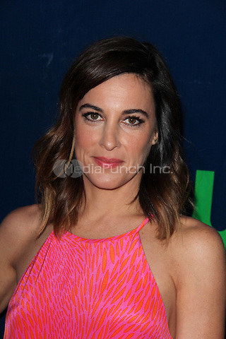 LOS ANGELES, CA - AUGUST 10: Lindsay Sloane at the CBS, CW, Showtime Summer TCA Party, Pacific Design Center in Los Angeles, California on August 10, 2015. Credit: David Edwards/MediaPunch