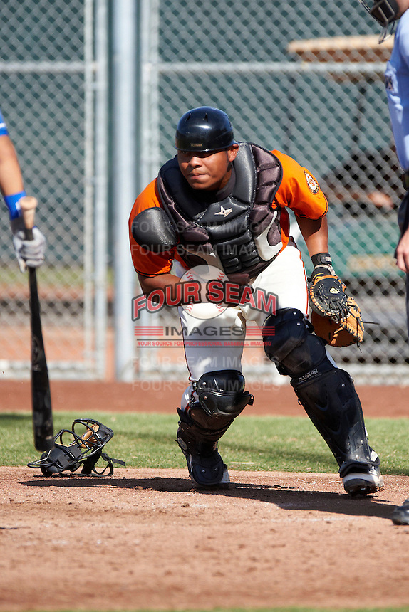 San Francisco Giants minor league catcher Gabriel Cornier #7 during an instructional league game against the Kansas City Royals at the Giants Baseball Complex on October 18, 2012 in Scottsdale, Arizona. (Mike Janes/Four Seam Images)