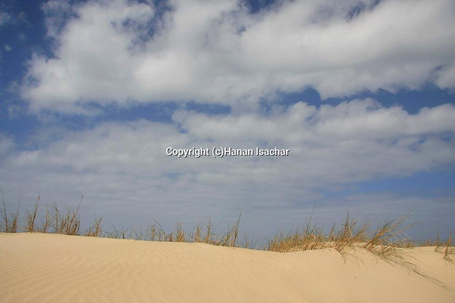 Israel, Sharon region. Sand dunes in Michmoret