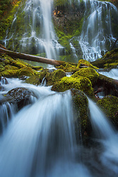 Water cascades through the forest and foliage of Proxy Falls in the Cascades range of Oregon.