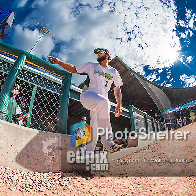 31 July 2016: Vermont Lake Monsters catcher Miguel Guzman emerges from the dugout to take the field for a game against the Connecticut Tigers at Centennial Field in Burlington, Vermont. The Lake Monsters edged out the Tigers 4-3 in NY Penn League action.  Mandatory Credit: Ed Wolfstein Photo *** RAW (NEF) Image File Available ***