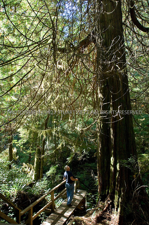 9/24/2006--Tofino, British Columbia, Canada..Tourists treking through a rainforest trail that leads to Comber Beach...Photograph By Stuart Isett.All photographs ©2006 Stuart Isett.All rights reserved.