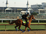 LOUISVILLE, KY -MAY 28: Kentucky Derby and Preakness winner Justify, ridden by Humberto Gomez, gallops at Churchill Downs, Louisville, Kentucky, in preparation for the June 9 Belmont Stakes in New York. (Photo by Mary M. Meek/Eclipse Sportswire/Getty Images)
